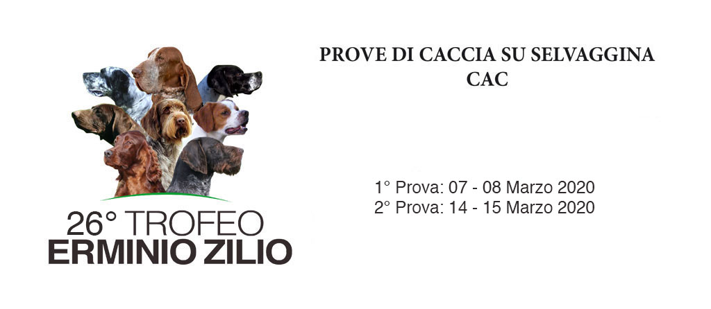 banner_zilio_2020